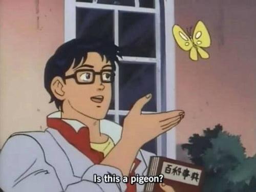El hombre que mira la plantilla de memes de mariposa